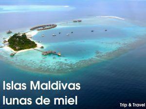 Islas Maldivas, vacaciones, hoteles, resorts, submarinismo, viajes de novios, lunas de miel, esnorkel, vuelos, barato, economico, pesca, playa Hulhumalé, palacio Mulee-aage, centro islámico, Malé Friday Mosque, Hithadoo, Maradhoo, la gran turquesa, Hukuru Miskiiy, Mezquita del Viernes, Monumento al Tsunami, mercado de Malé
