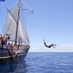 Tenerife Boat Hire, tours, Playa de las Américas, tickets, excursions, hotels, reservations, restaurants, cheap, events, dolphins show, whales watching, yachts, catamarans